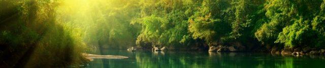 cropped-green-lake.jpg